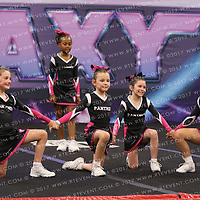 1095_Panthers Cheerleading - Wild