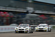 March 17-19, 2016: Mobile 1 12 hours of Sebring 2016. #100 Lucas Luhr, John Edwards, Kuno Wittmer, Graham Rahal, BMW Team RLL, BMW F13 M6 GTLM, #25 Bill Auberlen, Dirk Werner, Bruno Spengler, BMW Team RLL, BMW F13 M6 GTLM