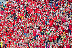 LYON, FRANCE - Wednesday, July 6, 2016: Wales supporters during the UEFA Euro 2016 Championship Semi-Final match against Portugal at the Stade de Lyon. (Pic by Paul Greenwood/Propaganda)