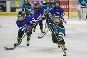 KELOWNA, CANADA - FEBRUARY 18:  KMHA Game at the Kelowna Rockets game on February 18, 2017 at Prospera Place in Kelowna, British Columbia, Canada.  (Photo By Cindy Rogers/Nyasa Photography,  *** Local Caption ***