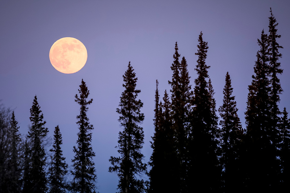 The moon rises over the Mackenzie Delta.