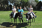 Children ride donkeys at a petting zoo