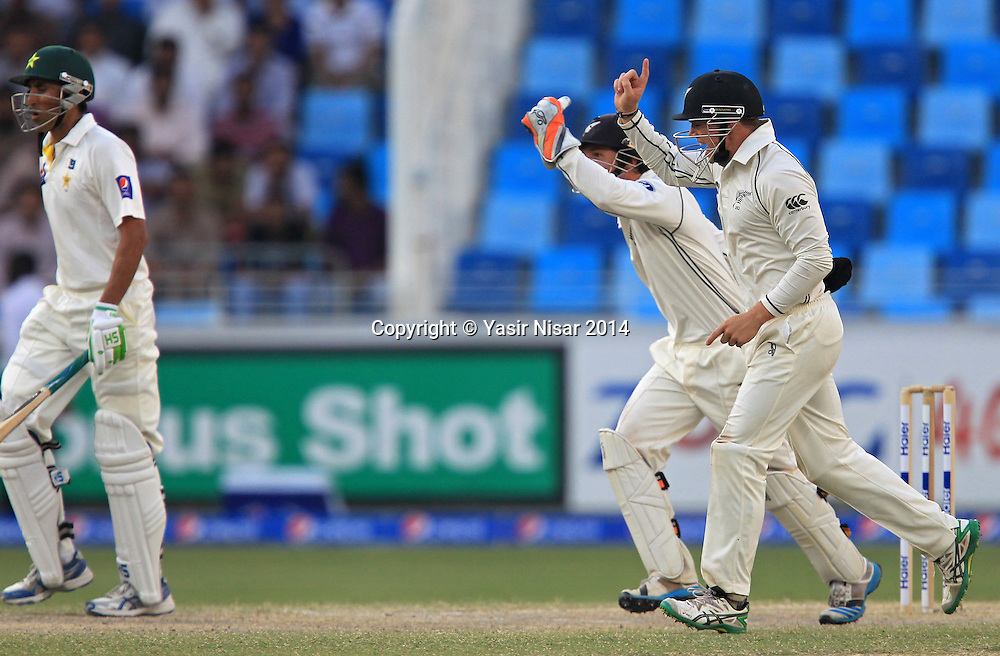 Pakistan vs New Zealand, 21 November 2014 <br /> NZ players celebrate the dismissal of Younis Khan on the fifth day of second test in Dubai