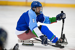 ITA v SWE during the 2013 World Para Ice Hockey Qualifiers for Sochi, Torino, Italy