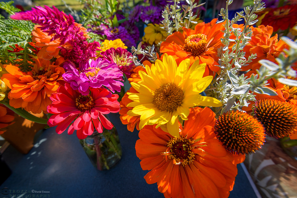 Bouquets of flaowers for sale at a farmers market in Maryland, USA