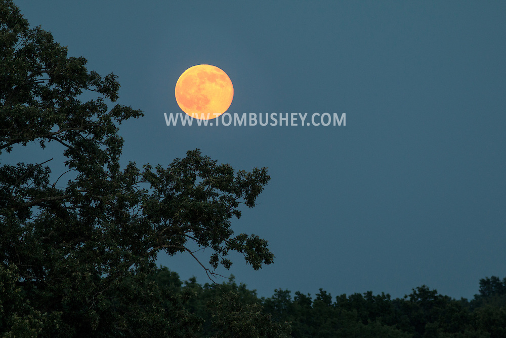 Middletown, New York - The full moon of June, known as the strawberry moon, rises on June 20, 2016.