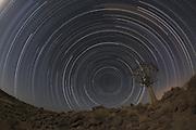 Star Trails Namibia