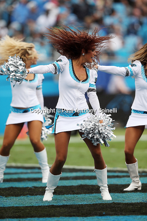 The Carolina Panthers cheerleaders do a dance routine during the 2015 NFL week 3 regular season football game against the New Orleans Saints on Sunday, Sept. 27, 2015 in Charlotte, N.C. The Panthers won the game 27-22. (©Paul Anthony Spinelli)