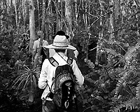 Follow the leader into the jungle. Swamp walk with Kristen and Angela in the Everglades behind  Clyde Butcher's Big Cypress Gallery. Image taken with a Leica X2 camera (ISO 100, 24 mm, f/3.5, 1/80 sec).