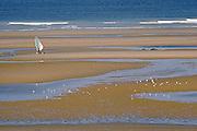 Windskater on a Boulonnais' beach, Nord-Pas-de-Calais region.<br /> V&eacute;liplanchiste &agrave; roulette sur une plage du Boulonnais, Nord-Pas-de-Calais.