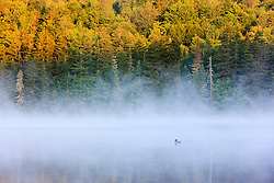 Mist on Little Greenough Pond in Errol, New Hampshire.