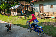 Rimbang Baling Wildlife Sanctuary, Sumatra, Indonesia, August 2017. The people in the villages have all heard tiger tales, but few have actually seen one. International volunteers of Biosphere Expeditions work together with local scientists of the WWF project to  protect the Sumatran Tiger. The 'citizen scientists' survey the rainforest on foot and in boats, looking for tracks, kills, scats and the animals themselves, and setting camera traps. They also work with local people on capacity-building and creating local incentives for tiger conservation. All this in an effort to mitigate human-wildlife conflict and create strategies to ensure the survival of the critically endangered Sumatran tiger into the future. Photo by Frits Meyst / MeystPhoto.com