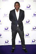 27.JUNE.2013. LONDON<br /> <br /> DAVID HAREWOOD ATTENDS A PHOTOCALL TO CELEBRATE THE LAUNCH OF UKYV'S BRAND NEW DRAMA CHANNEL.<br /> <br /> BYLINE: EDBIMAGEARCHIVE.CO.UK<br /> <br /> *THIS IMAGE IS STRICTLY FOR UK NEWSPAPERS AND MAGAZINES ONLY*<br /> *FOR WORLD WIDE SALES AND WEB USE PLEASE CONTACT EDBIMAGEARCHIVE - 0208 954 5968*