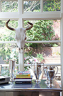 The Portland, Oregon home of Wendy Burden, author of  the memoir, Dead End Gene Pool. One of Ms. Burden's arrangements in the kitchen - the trophies are from her grandmother's farm.