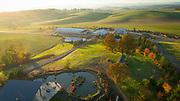 Aerial drone view over Saffron Fields Vineyard, Yamhill-Carlton AVA, Willamette Valley, Oregon
