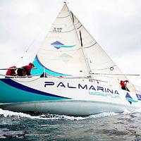 Palmarina
