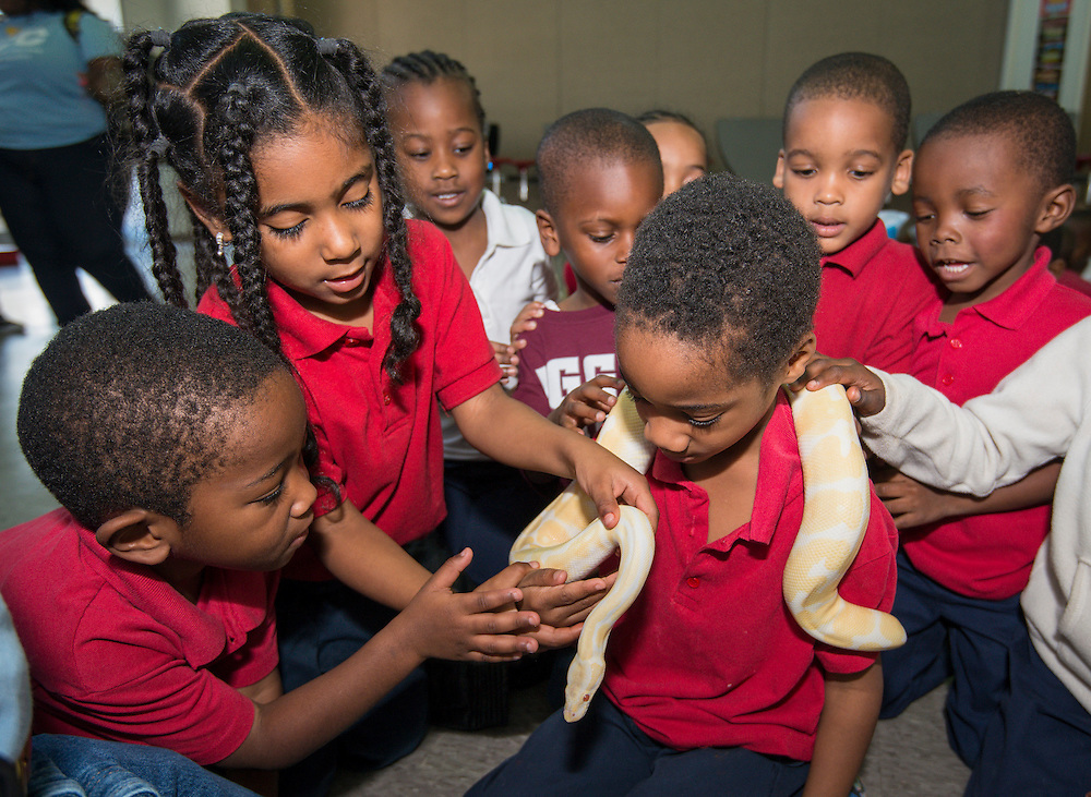 Students participate in a snake handling demonstration during Career Day at Foster Elementary School, March 14, 2014.