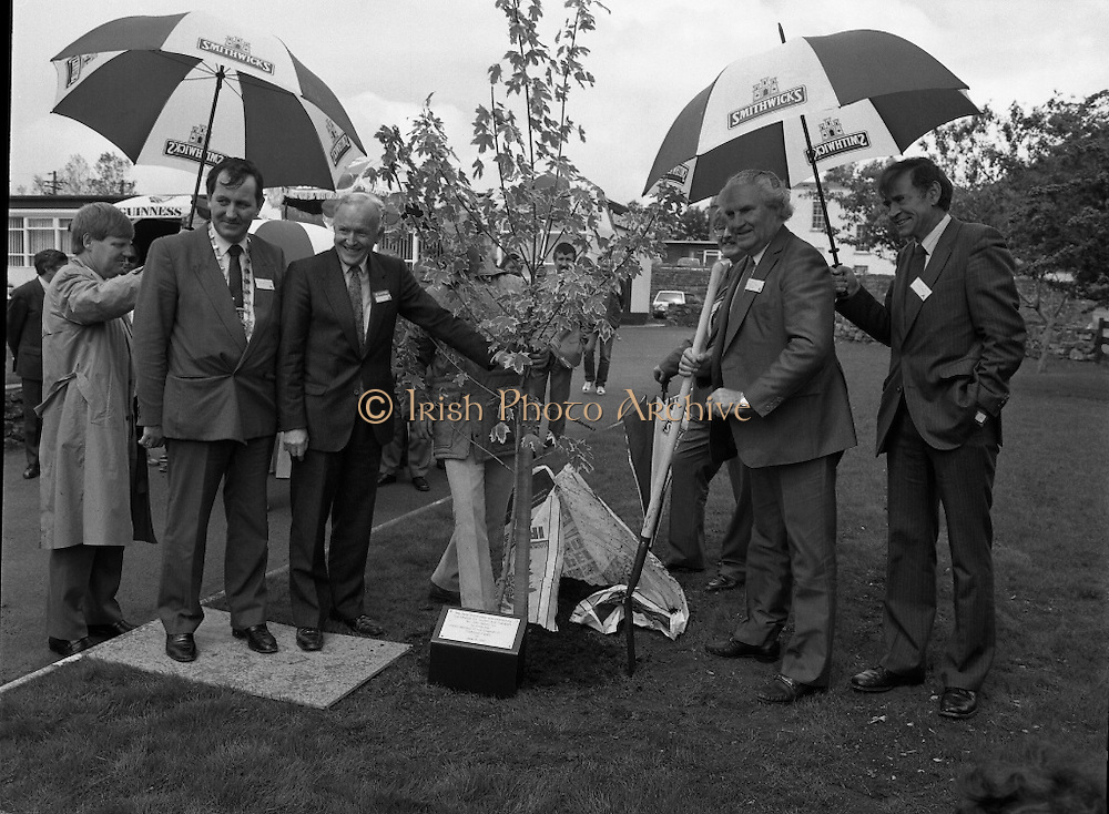 New Facilities At Emerald Star Line.   (R59)..1987..08.06.1987..06.08.1987..8th June 1987..the Minister for Transport and Tourism, Mr John Wilson TD opened a new Customer Service Facility at Emerald Star Line,Carrick on Shannon. Following the viewing of the facility and the planting of a commemorative tree, the Minister, accompanied by Mr Brian Slowey,Managing Director, Guinness,Ireland and Mr E H Bodell, Chairman, Emerald Star line departed on a cruise of The Shannon aboard an Emerald Star Cruiser...The Minister for Transport and Tourism, Mr John Wilson, is pictured planting the commemorative tree at the opening of the new Customer Service Facility at Emerald Cruise line