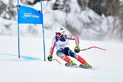 Downhill, WALSH Thomas C, LW4, USA at the WPAS_2019 Alpine Skiing World Championships, Kranjska Gora, Slovenia