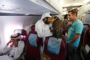 In a Qatar Airways economy cabin of a flight between Baku, Azerbaijan, and Doha, Qatar, a group of Qatari men sit on the plane with their treasured birds. One of the men shows off his bird to a fascinated tourist. The men practise the art of falconry and to escape the heat of Qatar flew for a week to the cooler weathers of Azerbaijan to let the birds fly. The birds cost over US$10,000 each, have micro-chips in their legs so they can find them if they fly off and documents allowing them to travel abroad.