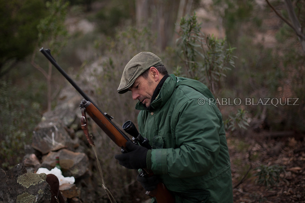 Pedro Bravo 48, downloads his riffle while hunting near Carbajo on January 19 2013, in Caceres Province, Extremadura, Spain. .Caceres has a well preserved natural environment. Plenty of its surface is dedicated to deers and wild boars hunting, making this, an important part of its economy. But most of the land belongs to large landowners. .In Carbajo, people gather three times a year to hunt deers and wild boars. In the past, they used to hunt for eating, but now days, they practice it as an sport and a social event. Then, they sell what the catch as wild game meat.