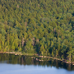 The mixed pine and hardwood forest on the shore of Eagle Lake as seen from Conners Nublle in Maine's Acadia National Park.