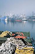 Alaska. Cities. Southeast, Petersburg, Mitkof Island. Boat harbor, commercial fishing salmon fleet.