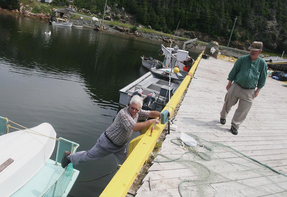 16 July 2007 Kittiwake Coast, NL, Canada,  --..Travels through Newfoundland...Photo by Will Nunnally / Will Nunnally Photography