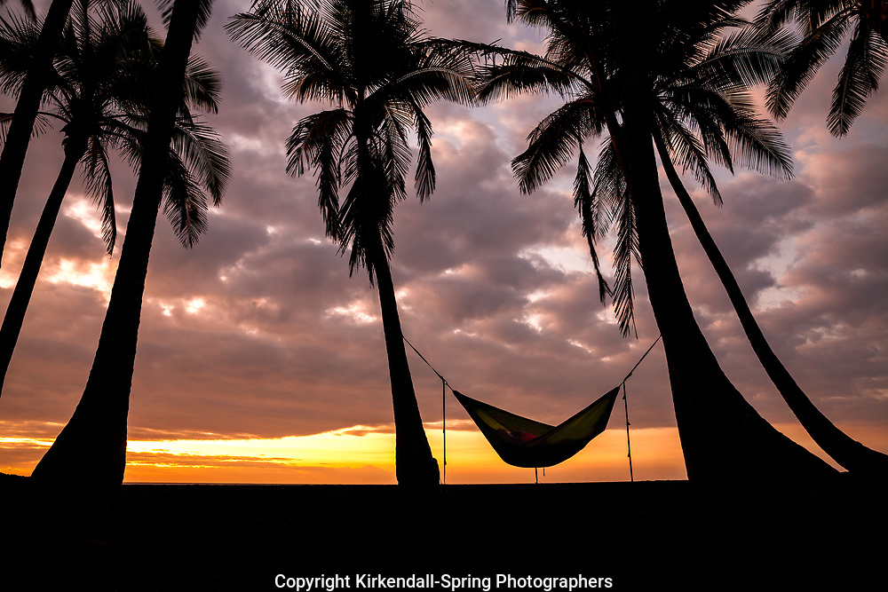 HI00229-00...HAWAI'I - Sleeping in a hammock at sunrise at Punalu'u Beach Park on the Island of Hawai'i.