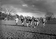 Irish Rugby Football Union, Ireland v Scotland, Five Nations, Irish team practice at Clonskeagh, Dublin, Ireland, Thursday 28th March, 1958,.28.3.1958, 3.28.1958,..Irish Team, ..P J Berkery, Wearing number 15 Irish jersey, Full back, Landsdowne Rugby Football Club, Dublin, Ireland, and, London Irish Rugby Football Club, Surrey, England, ..A J O'Reilly, Wearing number 14 Irish jersey, Right Wing, Old Belvedere Rugby Football Club, Dublin, Ireland,  ..N J Henderson, Wearing number 13 Irish jersey, Right centre, N.I.F.C, Rugby Football Club, Belfast, Northern Ireland, ..D Hewitt, Wearing number 12 Irish jersey, Left centre, Queens University Rugby Football Club, Belfast, Northern Ireland,..A C Pedlow, Wearing number 11 Irish jersey, Left wing,  C I Y M S Rugby Football Club, Belfast, Northern Ireland, ..J W Kyle, Wearing number 10 Irish jersey, Stand Off, N.I.F.C, Rugby Football Club, Belfast, Northern Ireland, ..A A Mulligan, Wearing number 9 Irish jersey, Scrum Half, Cambridge University Rugby Football Club, Cambridge, England, and, Wanderers Rugby Football Club, Dublin, Ireland, ..P J O'Donoghue, Wearing  Number 1 Irish jersey, Forward, Bective Rangers Rugby Football Club, Dublin, Ireland,  ..A R Dawson, Wearing number 2 Irish jersey, Forward, Wanderers Rugby Football Club, Dublin, Ireland, ..B G M Wood, Wearing number 3 Irish jersey, Forward, Garryowen Rugby Football Club, Limerick, Ireland, ..J B Stevenson, Wearing number 4 Irish jersey, Forward, Instonians Rugby Football Club, Belfast, Northern Ireland,..W A Mulcahy, Wearing number 5 Irish jersey, Forward, University College Dublin Rugby Football Club, Dublin, Ireland, ..J A Donaldson, Wearing number 6 Irish jersey, Forward, Collegians Rugby Football Club, Belfast, Northern Ireland, ..J R Kavanagh, Wearing number 7 Irish jersey, Forward, Wanderers Rugby Football Club, Dublin, Ireland, ..N A Murphy, Wearing number 8 Irish jersey, Forward, Cork Constitution Rugby Football Club, Cork, Ireland,.