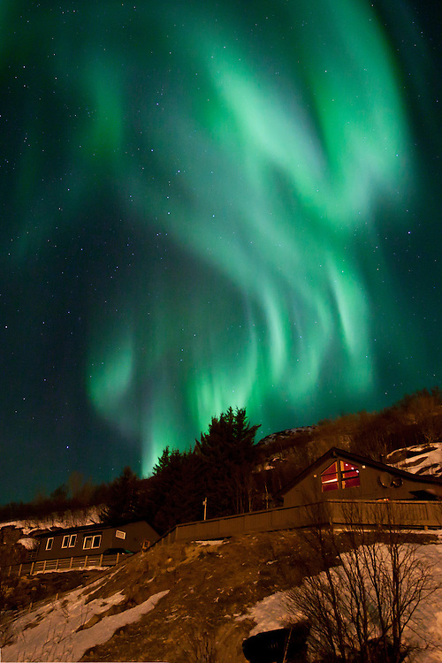 The Aurora Borealis (Northern Lights) at Ersfjordbotn in Tromso, Norway with a dragon shape.