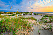 Calm sunrise in the sand dunes at Corolla on the Outer Banks of NC.