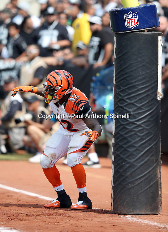 Cincinnati Bengals running back Jeremy Hill (32) dances and celebrates after running for a second quarter touchdown that gives the Bengals a 17-0 lead during the 2015 NFL week 1 regular season football game against the Oakland Raiders on Sunday, Sept. 13, 2015 in Oakland, Calif. The Bengals won the game 33-13. (©Paul Anthony Spinelli)