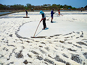 28 MARCH 2018 - SAMUT SONGKHRAM, SAMUT SONGKHRAM, THAILAND: Workers break up salt in a field during the 2018 salt harvest in Samut Songkhram, about 90 minutes south of Bangkok. Sea salt is made in provinces south of Bangkok by flooding fields with ocean water after the rainy season. As the fields dry out from evaporation, workers go into the fields and gather the salt left behind.       PHOTO BY JACK KURTZ