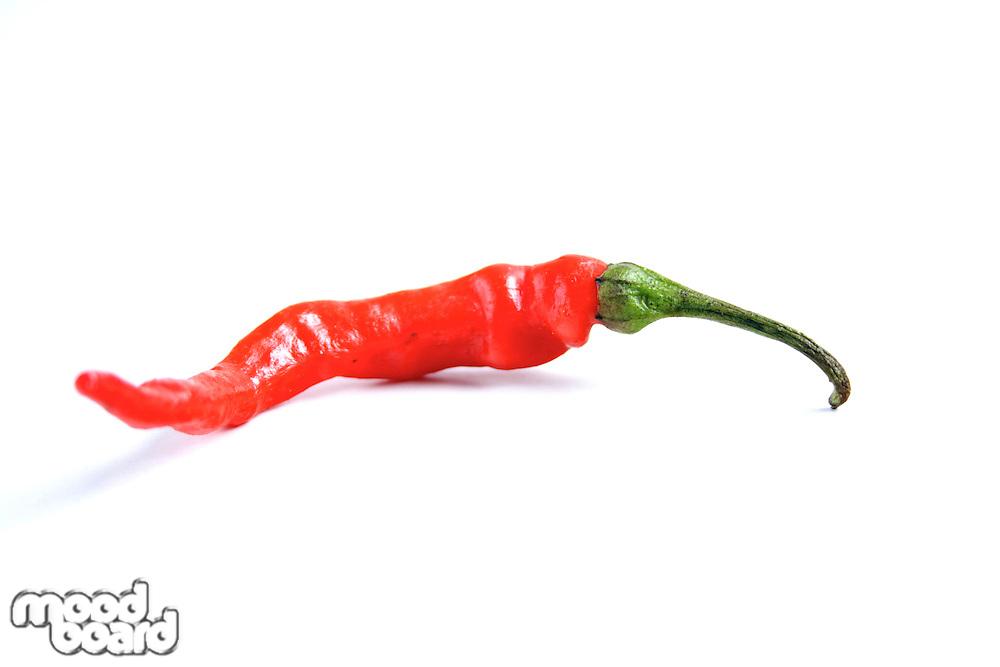 Red chilli peepr on white background