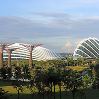 Supertrees at Gardens By The Bay in with Flower Dome & Cloud Forest conservatories behind.