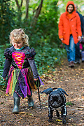 Daisy with Odin the pug on the walk on Hampstead Heath - A charity Halloween Dog Walk and Fancy Dress Show organised by All Dogs Matter at the Spaniards Inn, Hampstead. London 29 Oct 2017.
