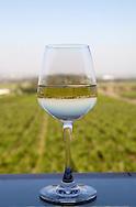 Indiskt vin producerat av Sula Wines, Nashik, Indien