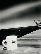 A dog and his coffee cup on a dock by a lake.