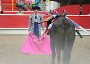 BEA AHBECK/NEWS-SENTINEL<br /> Brega Caudio Miguel faces down the bull during the bloodless bullfight during the Our Lady of Fatima Portuguese Festival in Thornton Saturday, Oct. 15, 2016.