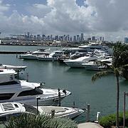 Qatar Scotuing Marina