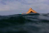 Surf Girls Sayulita