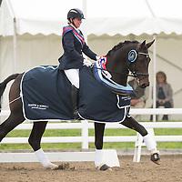 Novice Restricted - 2014 British Dressage National Championships