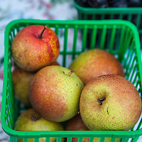 Asian Pears at a farmers market.