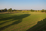 An aerial view of Shantilal's organic cotton farm in Madhya Pradesh, India.