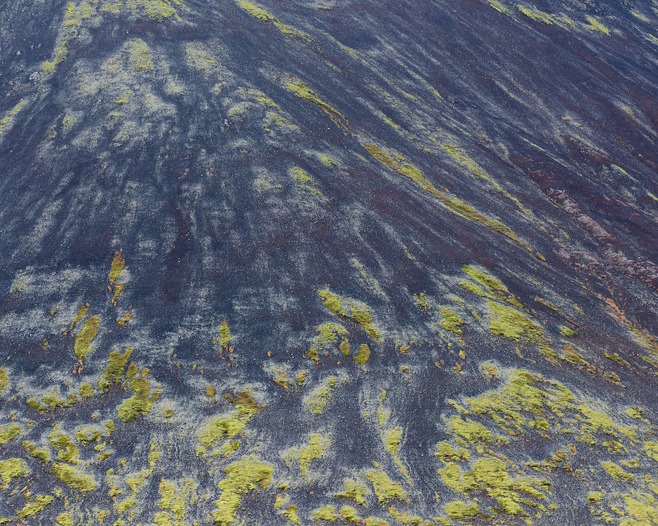 Ash and moss, Berserkjahraun, Iceland