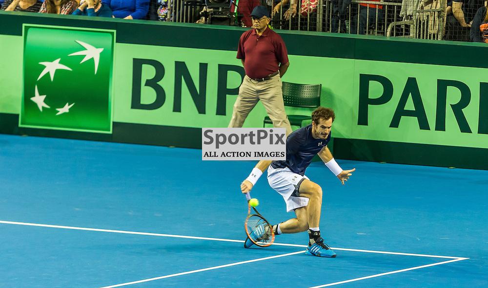 during the Davis Cup Semi-final between Great Britian and Australia (c) ROSS EAGLESHAM | Sportpix.co.uk