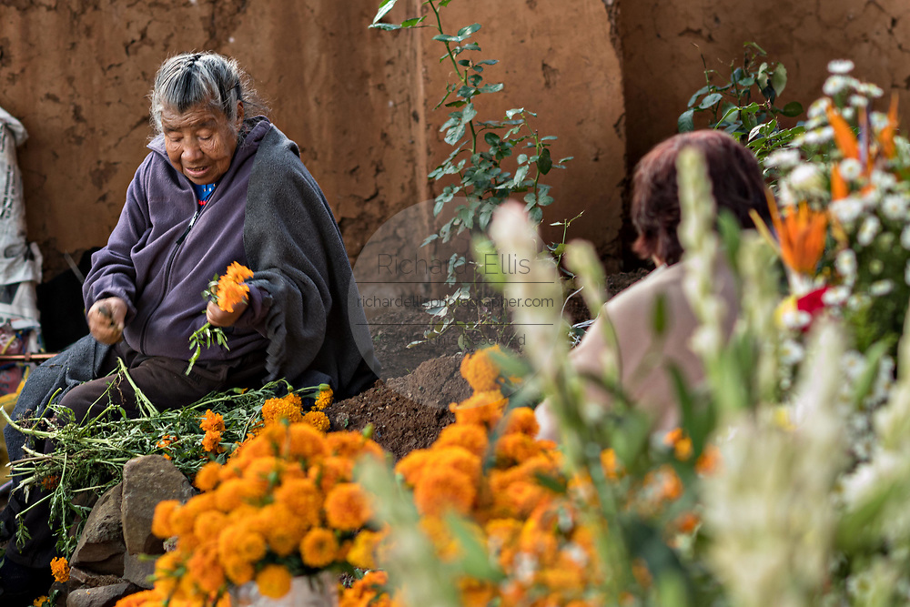 A woman decorates a gravesite of a family member with flowers for the Day of the Dead festival October 31, 2017 in Tzintzuntzan, Michoacan, Mexico.
