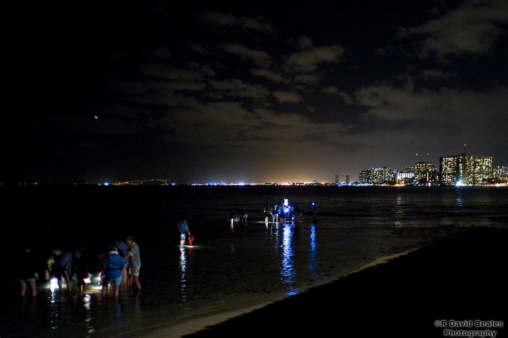 Reef at Night walk with the Waikiki Aquarium