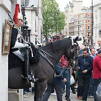 20130525 - London